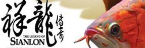 安达水族批发市场|安达水族馆|安达龙鱼